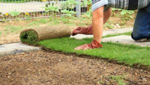 Landscape Installation/Contractor