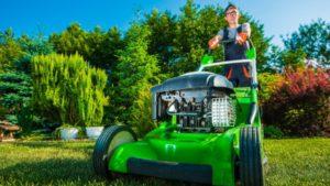 Landscape Management & Lawn Care